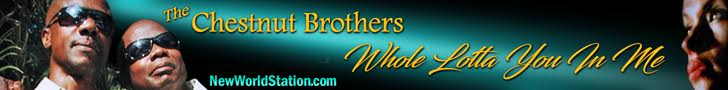 Whole Lotta You In Me - Chestnut Brothers